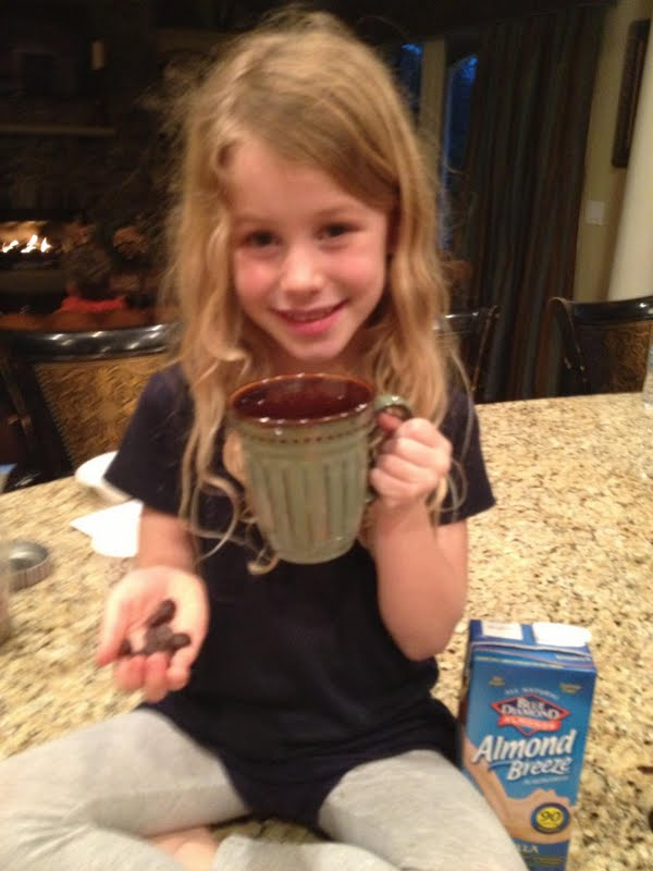 Healthy Hot Cocoa (Gluten & Dairy Free) | 360 Your Life ...