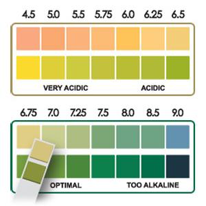 pH test strips pH chart