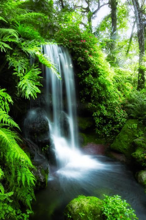 water alkaline spring natural ph balance curious fruits body