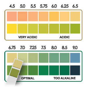 pH test strips pH chart