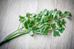 brooke parsley